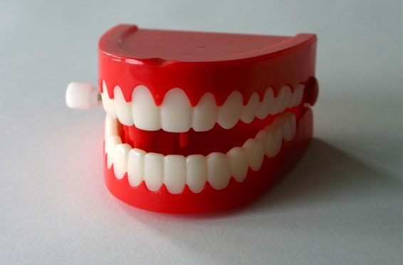 The Food Teacher Teeth